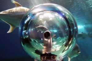 360Bubble is a spherical underwater housing for 360 cameras