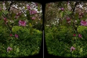3D framegrab from a Vuze Camera sample video