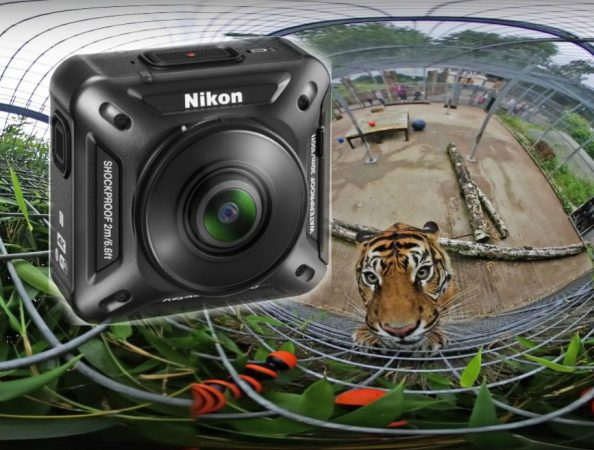 Nikon Keymission 360 attacked by a tiger