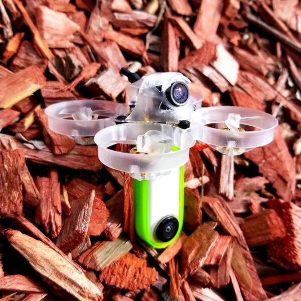 Newbeedrone Beebrain Brushless with Insta360 Go
